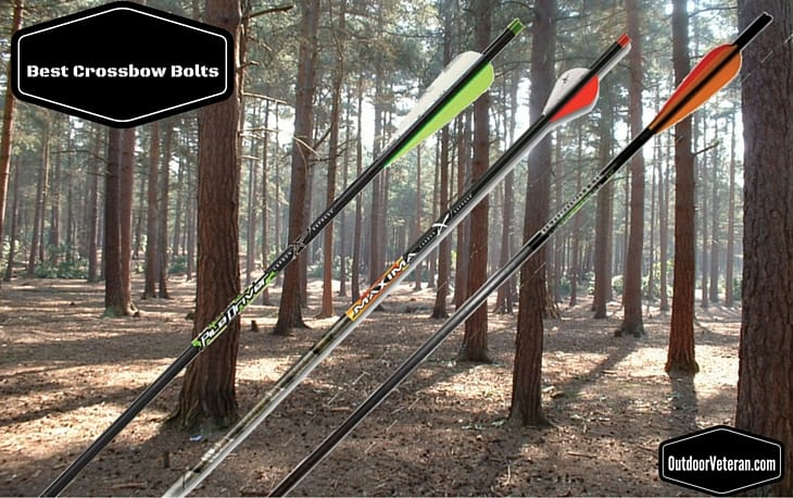 Best Crossbow Bolts on the Market