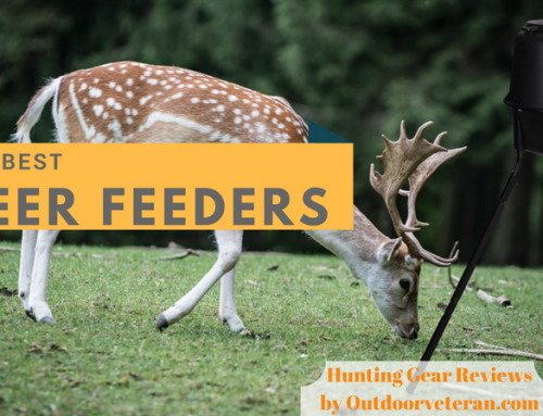 Hunt More White Tail This Season Using the Best Deer Feeder
