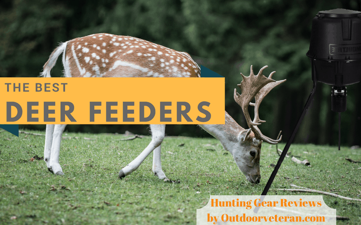 The Best Deer Feeders