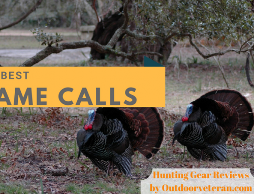 Attract More Prey to Hunt by Using the Best Game Calls Around