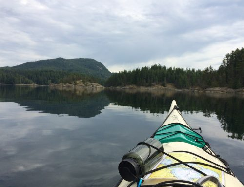 Lake vs. Sea Kayak: Which is Right for You?