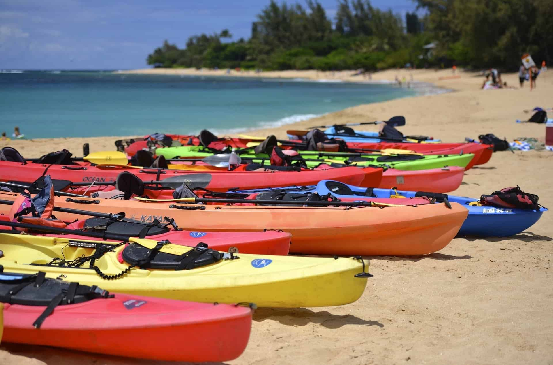 Line of Kayaks on the Beach