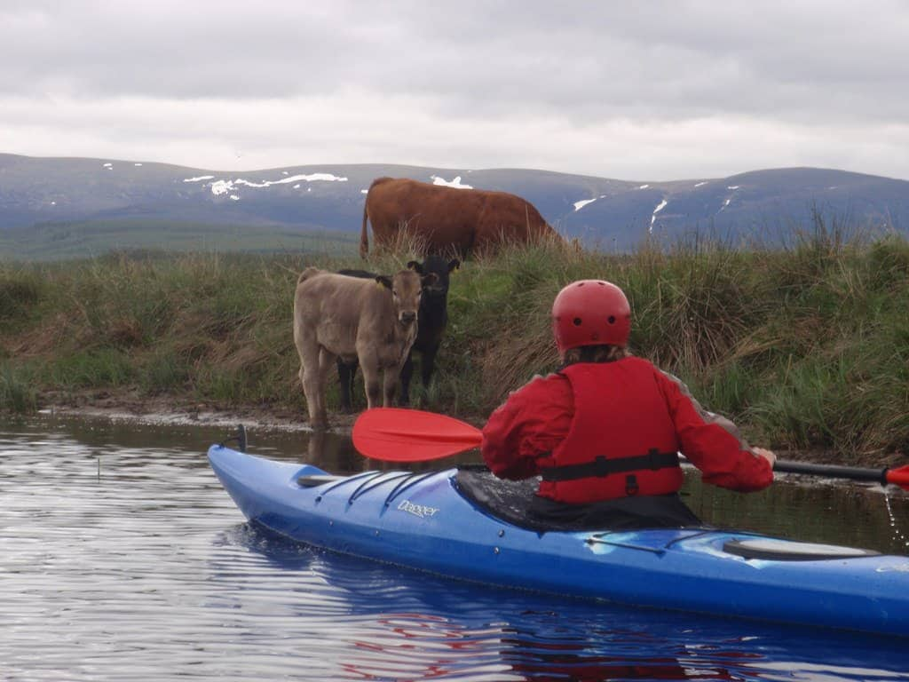 Man paddling a touring kayak