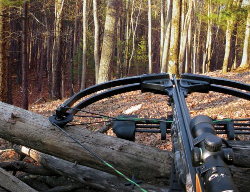 Nine Tips That Will Make You a Better Crossbow Hunter