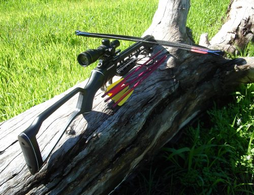 Recurve vs. Compound Crossbows: What's the Difference?