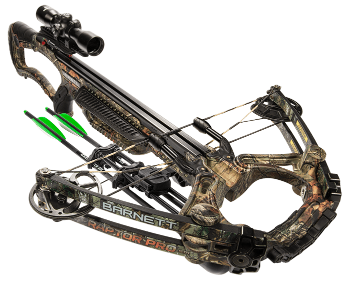 Barnett Raptor Review Image