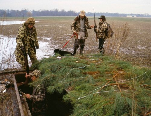 How Wearing Camo Clothes Helps Your Hunting Success