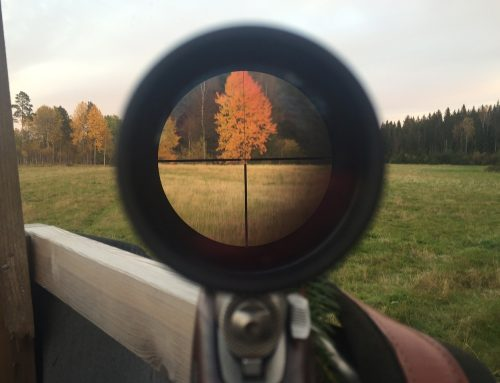 The Different Types of Rifle Sights and When to Use Them
