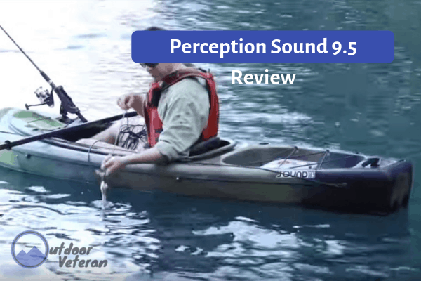 Perception Sound 9.5 Review
