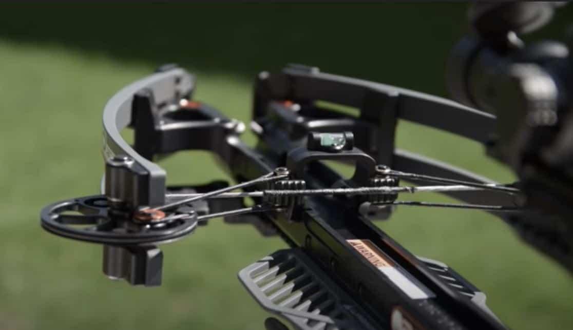 R20 Rear Shot