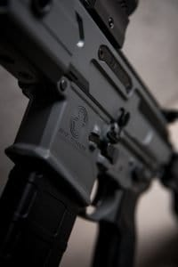 AR15 Close up